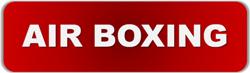 東日本ボクシング協会 エアボクシング公式HP